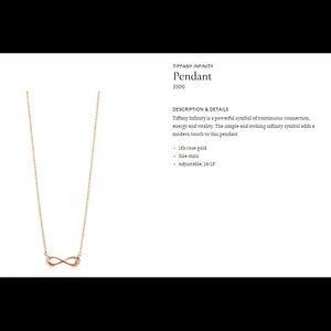 Authentic Tiffany & Co. Infiniti Pendant Necklace